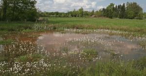 Natuurrijk Limburg Zuid natuurbeleid